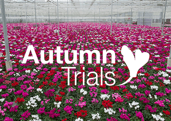 Autumn Trials Save The Date