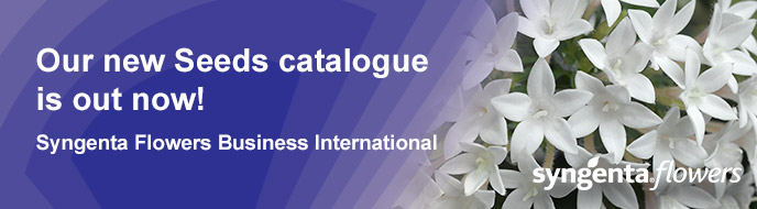 Our new Seeds Catalogue is out now - Syngenta Flowers Business International