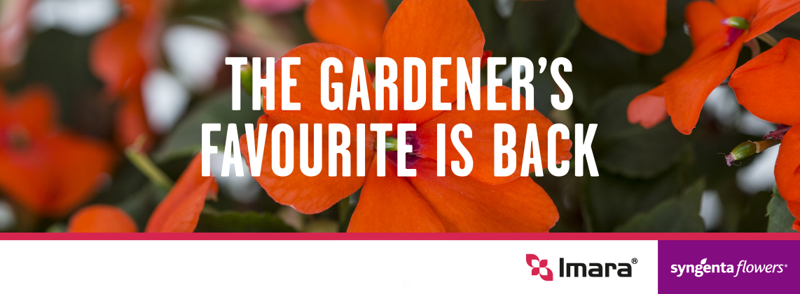 The gardener's favourite is back
