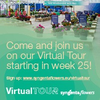 Syngenta Flowers Virtual Tour