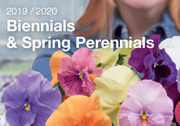 Biennials and Spring Perennials catalogue