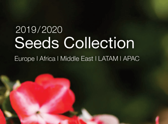 Syngenta Flowers Business International - Seeds Collection - Catalogue 2019