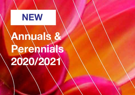Annuals and Perennials 2020-2021