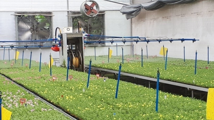 This is a picture that shows you a young plant production on tables with a sprinkler system and on top of that a watering boom - This enables the grower to be very specific with watering the different crops