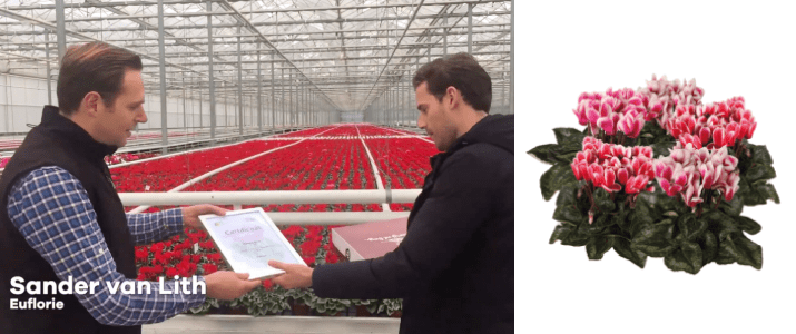 Euflorie wins first price